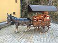 Hornberg Wagen.jpg