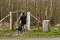 Hundeskoven10.JPG