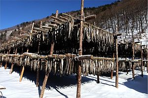 Alaska pollock as food - drying hwangtae in winter