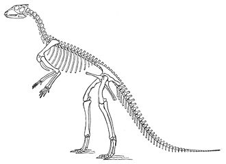 Hypsilophodon - O. C. Marsh's restoration in tripod-pose