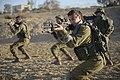 IDF Border Defense Array. XV.jpg