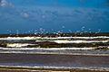 IJmuiden-beach-2013-38 (9045648470).jpg