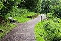 Il sentiero di Sternigo.jpg