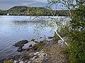 Ile Sherbrooke et monts - panoramio.jpg