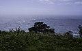 Ilha das Flores P5260078 (35199713573).jpg
