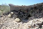 Infantrymen practice defensive tactics during Weapons, Tactics Instructor course 131015-M-OM885-153.jpg