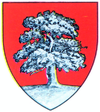 Coat of arms of Județul Lăpușna
