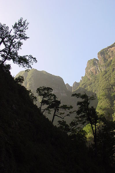 Imagem:Interior of Madeira.JPG
