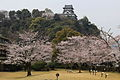 Inuyama Castle Keep Tower and Sakura.JPG