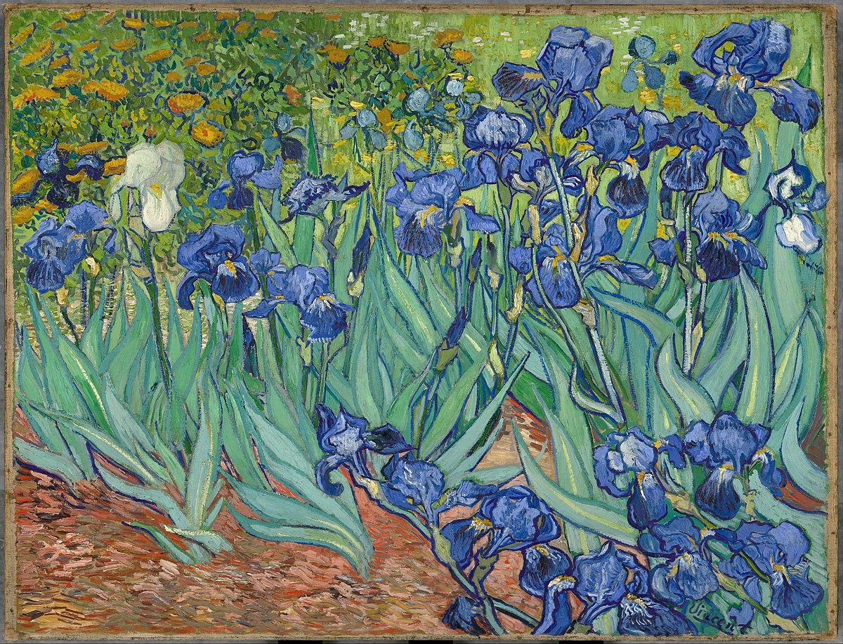Irises painting wikipedia izmirmasajfo
