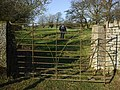 Iron Gate - geograph.org.uk - 684461.jpg