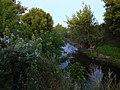 Irpin river Stoyanka1.JPG