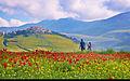Italy (9227830403).jpg