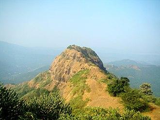 Jangali Jayagad - Fort