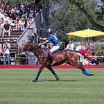 Jaeger-LeCoultre Polo Masters 2013 - 31082013 - Match Legacy vs Jaeger-LeCoultre Veytay for the third place 31.jpg