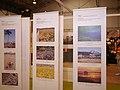 Japan Expo Sud - Ambiances - 2012-03-04- Ganbare Japan - P1350624.jpg