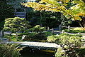 Japanese Tea Garden (San Francisco) - DSC00147.JPG