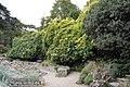 Jardin des Plantes - Jardin alpin 002.JPG