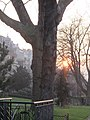 Jardins de l'avenue Foch, Paris 16e 6.jpg
