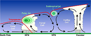 Jet stream - Cross section of the subtropical and polar jet streams by latitude