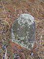 Jewish cemeteries in Vileyka 45.jpg