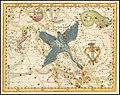 Johann Elert Bode - Cygnus, Lacerta, and Lyra.jpg