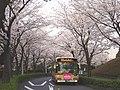 KC-HT2MMCA Kanachu I94 Ohsumidai.jpg