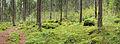Kangasvuori nature trail - panorama 2.jpg