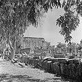 Kapernaum. Gezicht op de gedeeltelijk gereconstueerde synagoge uit de derde eeuw, Bestanddeelnr 255-1531.jpg
