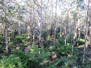 Gloucester National Park Protected area in Western Australia