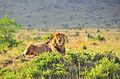 Kenia 2012 (41).JPG