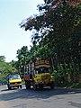 Kerala 17.jpg