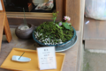 Ko-niwa or little garden in a bowl in a shop display Kyoto 2013.png