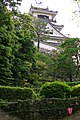 Kochi castle - 高知城 - panoramio (12).jpg
