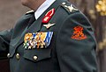 Koning Willem-Alexander uniform close-up.jpg