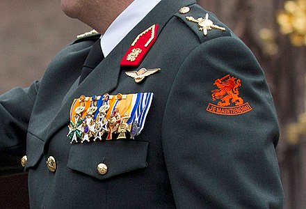 King Willem-Alexander in uniform with the Royal insignia Koning Willem-Alexander uniform close-up.jpg