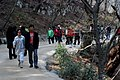 Korea-Gyeongju-Seokguram-Visitors-01.jpg