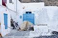 Korfos - Thirassia - Thirasia - Santorini - Greece - 33.jpg
