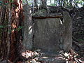 Kumano Kodo Dainichigoe World heritage51.JPG