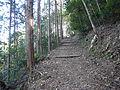 Kumano Kodo Kogumotorigoe World heritage46.JPG