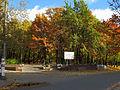 Kyiv Internatsionalny Park6.JPG