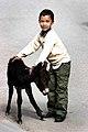 Ladakh (1143079522).jpg