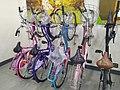Ladies bicycle Stand.jpg