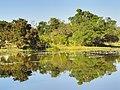 Lagoa - panoramio (15).jpg