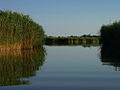 Lake Velencei.jpg