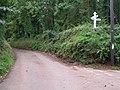Lanes between Exminster and Kenn - geograph.org.uk - 950975.jpg