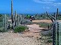 Las Claritas - panoramio.jpg