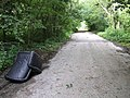 Lay-by off the A47, fly-tip - geograph.org.uk - 478159.jpg