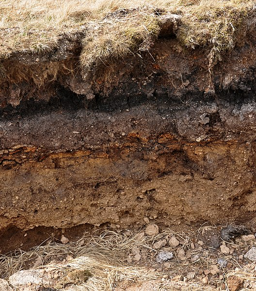 Our daily green what to know about the ground before you for Rocks and soil wikipedia