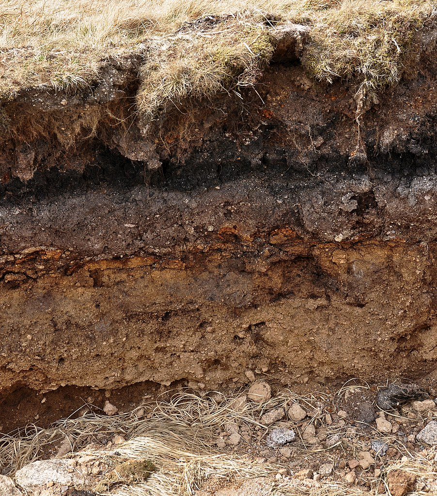 File layers in soil on wikimedia commons for Origin of soil